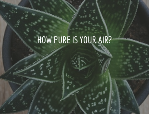 How Pure Is Your Air?